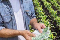 Ακατάσχετες και αφορολόγητες οι ενισχύσεις Covid-19 που λαμβάνουν οι Έλληνες αγρότες