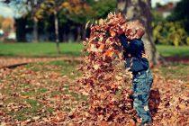 Σήμερα η πρώτη μέρα του φθινοπώρου
