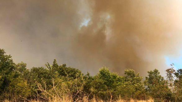 Αλεξανδρούπολη: Καλύτερη η εικόνα στα δυο μέτωπα φωτιάς – Συνεχίζεται η κατάσβεση