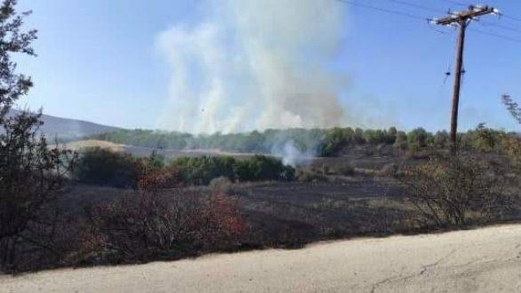 Φωτιά στην περιοχή του Πενταλόφου