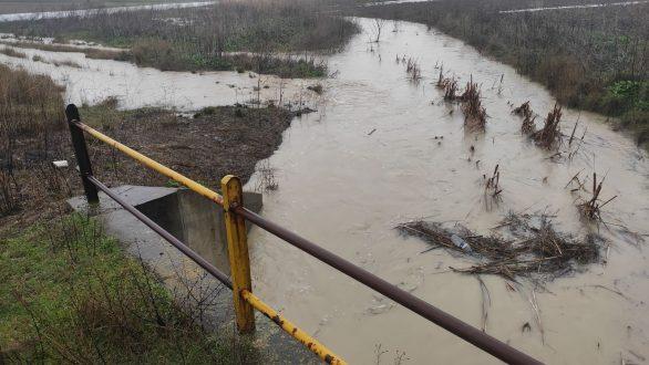 Σε επιφυλακή ο Έβρος – Όγκοι νερού από το φράγμα αφήνει η Βουλγαρία (Συνεχής ενημέρωση)