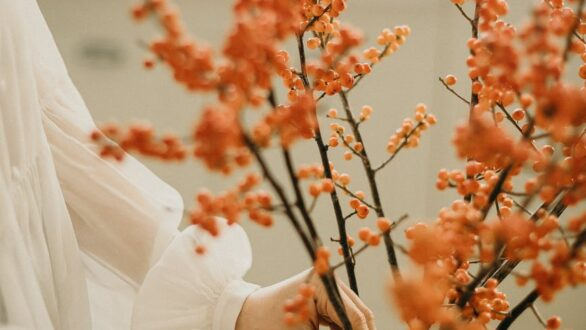 Φθινοπωρινή ισημερία και επίσημη έναρξη του φθινοπώρου