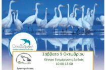 Ευρωπαϊκή Γιορτή των Πουλιών 2021 Δάσος της Δαδιάς